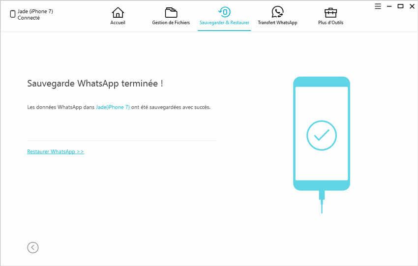 sauvegarde whatsapp terminee avec icarefone